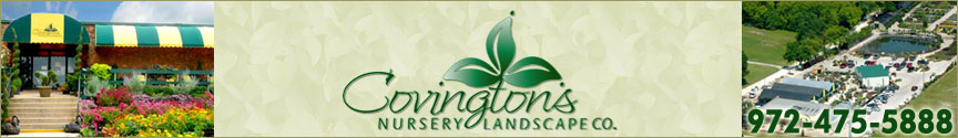 Covington Nursery and Landscape Company - Rowlett, Texas